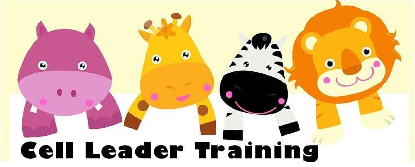 cl_training